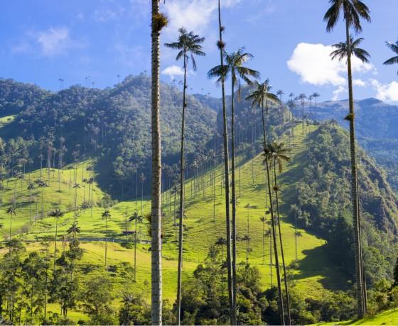 Colombie-La-Route-Du-Café - Sur La Route
